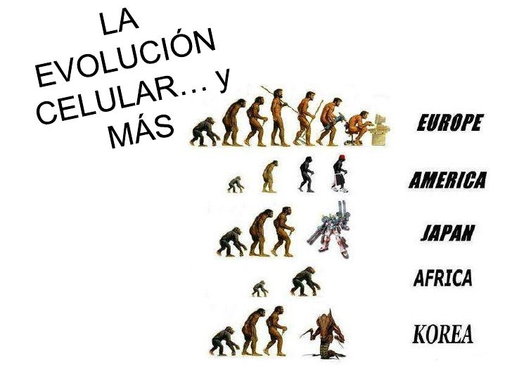 Evolucion Quimica y Celular la Evolución Celular… y