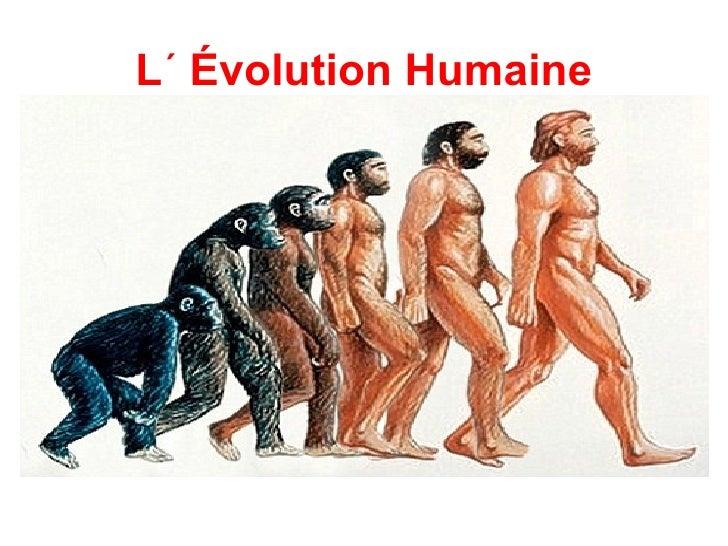 L´ Évolution Humaine