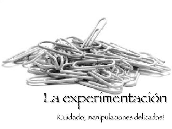La Experimentación