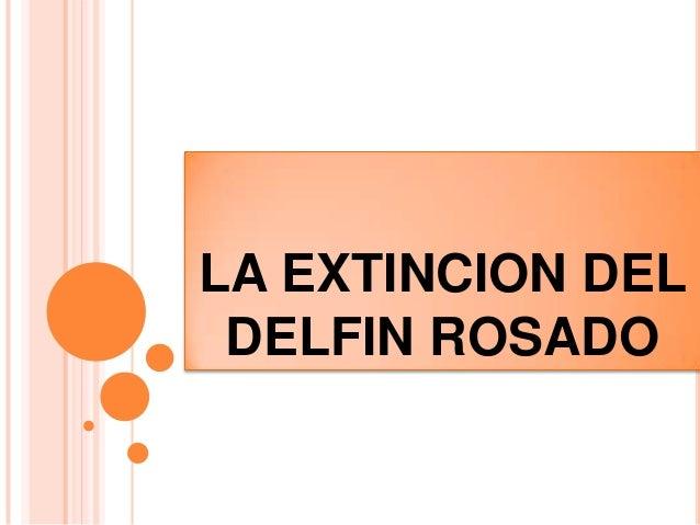 LA EXTINCION DEL DELFIN ROSADO