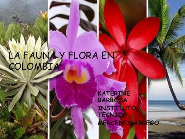 LA FAUNA Y FLORA EN COLOMBIA KATERINE BARBOSA INSTITUTO TECNICO MERCEDES ABREGO