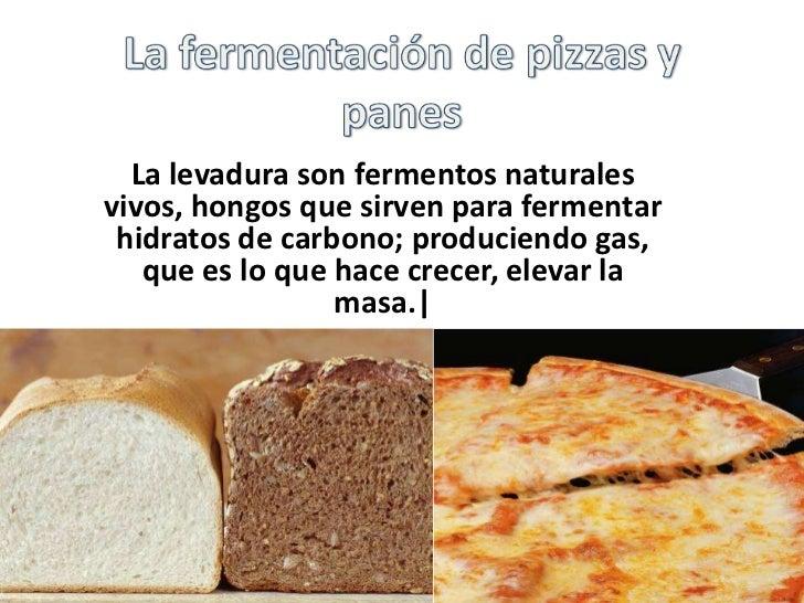 La fermentaci n_de_pizzas_y_panes (1)
