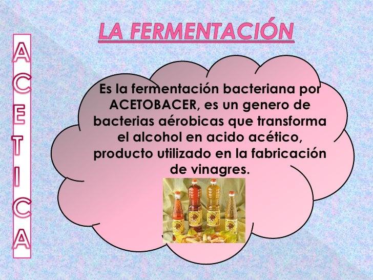 La fermentaci n - Alcohol de limpieza para que sirve ...