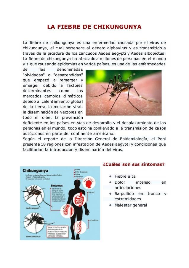 LA FIEBRE DE CHIKUNGUNYA La fiebre de chikungunya es una enfermedad causada por el virus de chikungunya, el cual pertenece...
