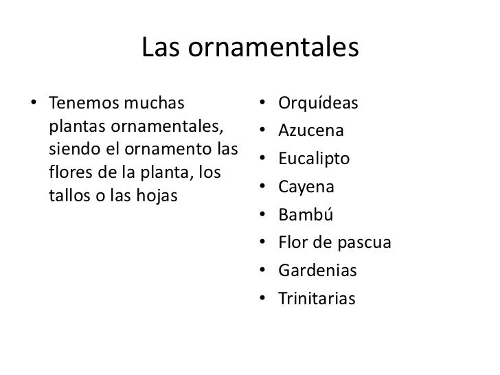 La flora dominicana for Funcion de las plantas ornamentales