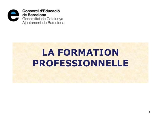 LA FORMATION PROFESSIONNELLE 1