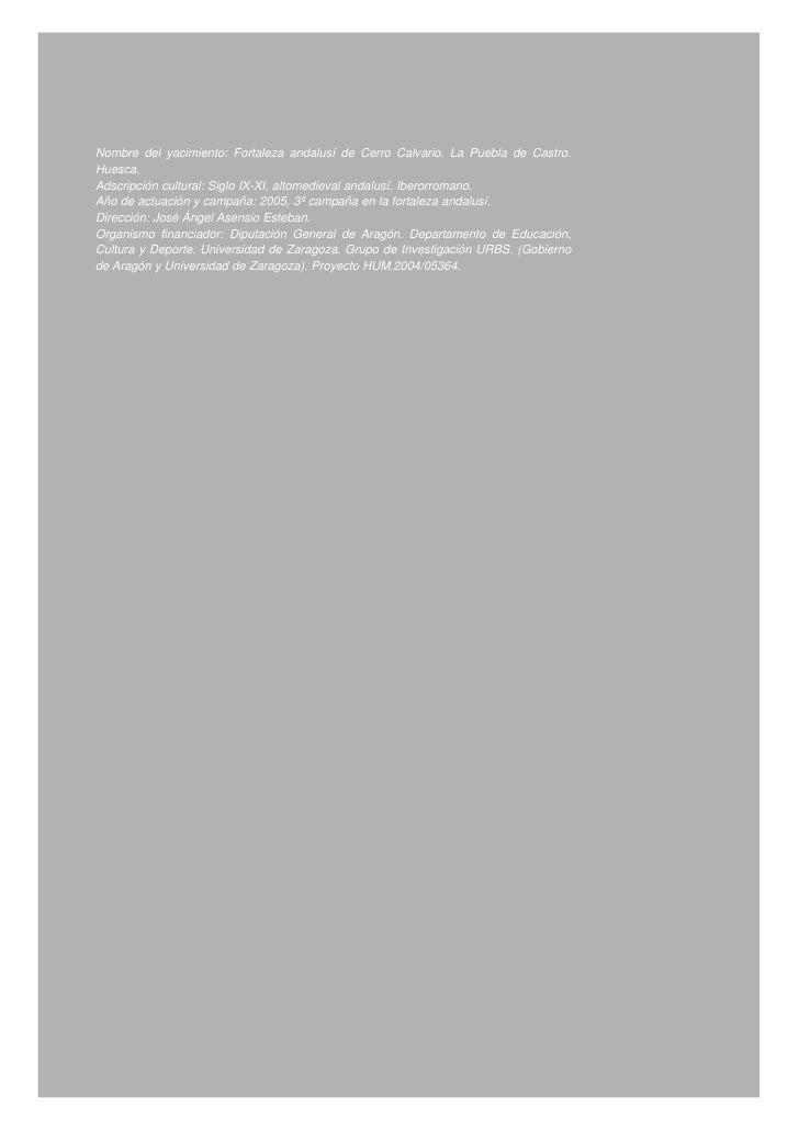 La fortaleza andalusí del cerro calvario. informe de la campaña de excavaciones de 2005. propuesta de identificación con castro muñones