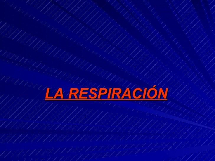 <ul><li>LA RESPIRACIÓN </li></ul>