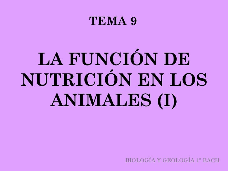 TEMA 9 LA FUNCIÓN DENUTRICIÓN EN LOS  ANIMALES (I)         BIOLOGÍA Y GEOLOGÍA 1º BACH