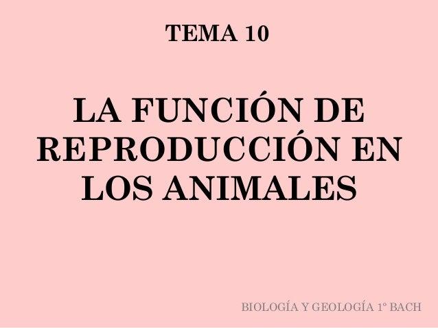 LA FUNCIÓN DE REPRODUCCIÓN EN LOS ANIMALES TEMA 10 BIOLOGÍA Y GEOLOGÍA 1º BACH