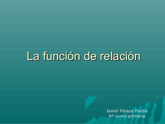 La función de relaciónLa función de relación Javier Pelayo Piedra 6º curso primaria
