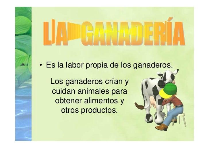 • Es la labor propia de los ganaderos.   Los ganaderos crían y   cuidan animales para    obtener alimentos y      otros pr...