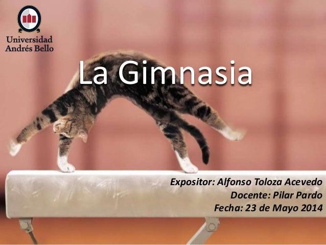 La Gimnasia Expositor: Alfonso Toloza Acevedo Docente: Pilar Pardo Fecha: 23 de Mayo 2014