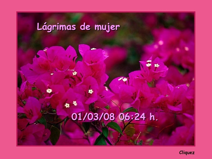 Cliquez Lágrimas de mujer 02/06/09   01:04  h.