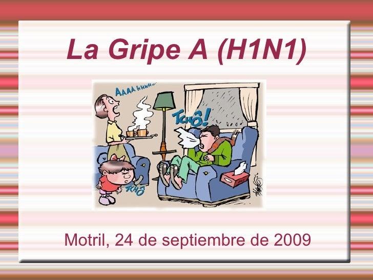 La Gripe A(KevinyAndrés)