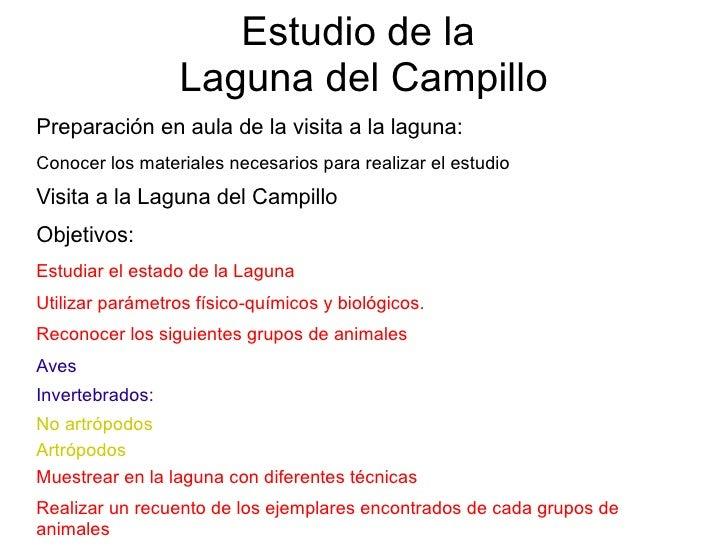 Estudio de la                   Laguna del Campillo Preparación en aula de la visita a la laguna: Conocer los materiales n...