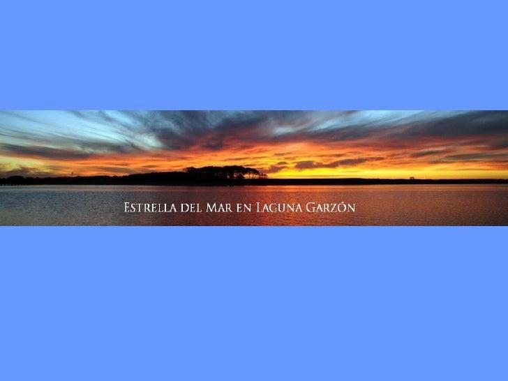 Pasando José Ignacio 11km y a 4km del cruce de la balsa se encuentraEstrella del Mar, en Laguna Garzón.Sobre la ruta 10 (i...