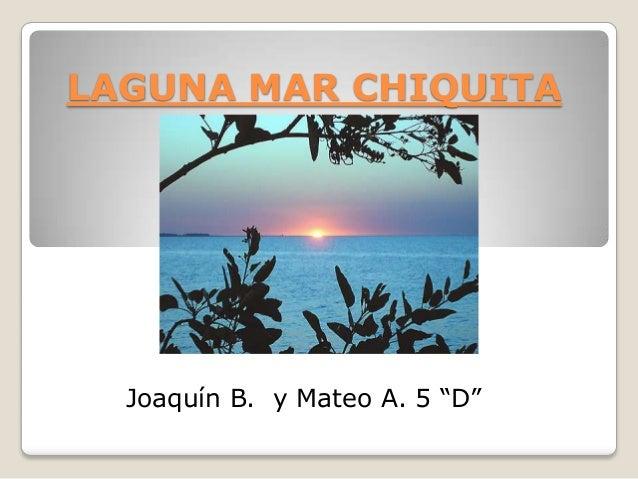 """LAGUNA MAR CHIQUITA  Joaquín B. y Mateo A. 5 """"D"""""""