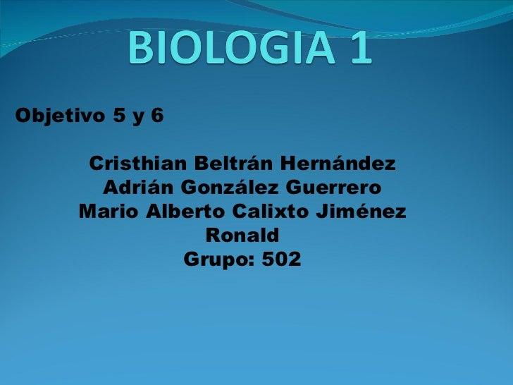 Objetivo 5 y 6 Cristhian Beltrán Hernández Adrián González Guerrero Mario Alberto Calixto Jiménez Ronald Grupo: 502