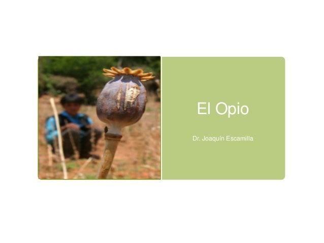 El OpioDr. Joaquín Escamilla