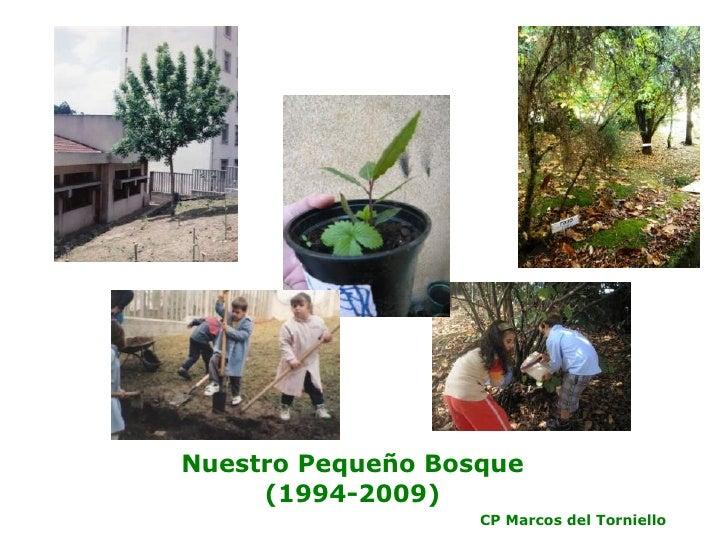 Nuestro Pequeño Bosque (1994-2009) CP Marcos del Torniello