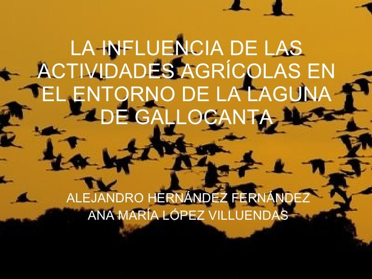 LA INFLUENCIA DE LAS ACTIVIDADES AGRÍCOLAS EN EL ENTORNO DE LA LAGUNA DE GALLOCANTA ALEJANDRO HERNÁNDEZ FERNÁNDEZ ANA MARÍ...