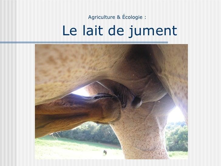 Agriculture & Écologie :   Le lait de jument