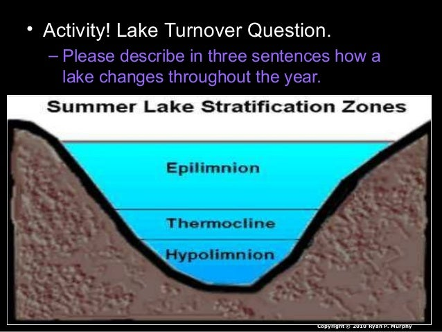 • Activity! Lake Turnover Question. – Please describe in three sentences how a lake changes throughout the year. Copyright...