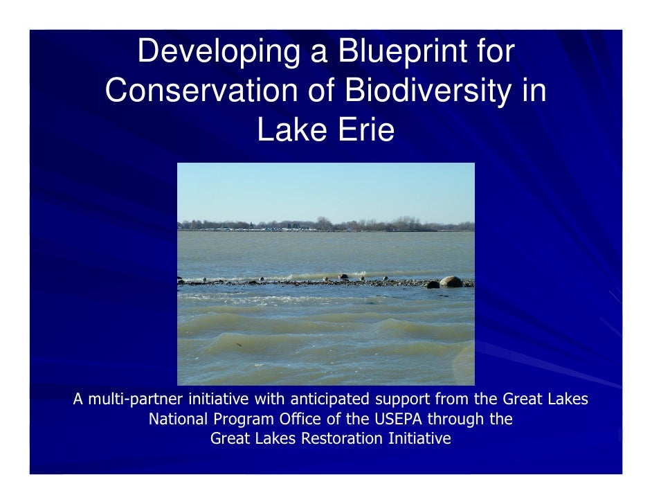 Developing a Blueprint for     Conservation of Biodiversity in              Lake Erie     A multi-partner initiative with ...