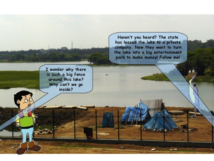 Lake privatization comic_strip
