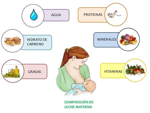 La lactancia materna - Alimentos para producir leche materna ...