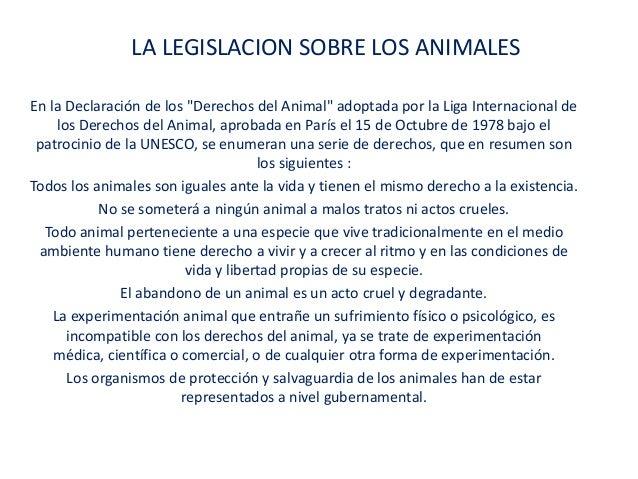 """LA LEGISLACION SOBRE LOS ANIMALESEn la Declaración de los """"Derechos del Animal"""" adoptada por la Liga Internacional de     ..."""