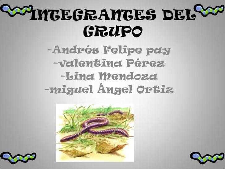 INTEGRANTES DEL GRUPO <br />-Andrés Felipe pay<br />-valentina Pérez<br />-Lina Mendoza<br />-miguel Ángel Ortiz<br />