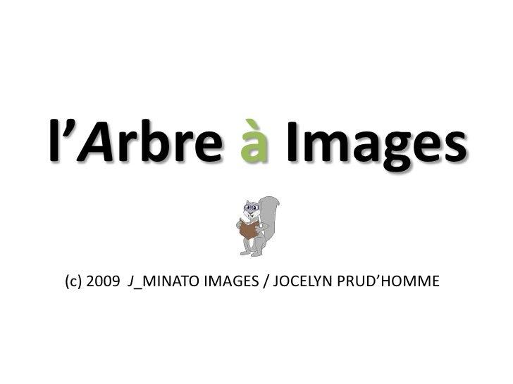 L'alphabet en images