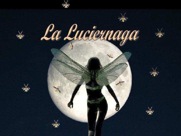 La Luciernaga