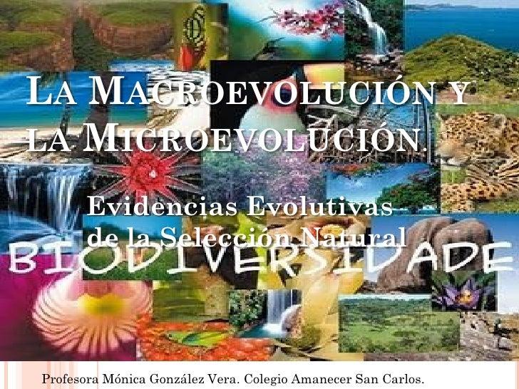 LA MACROEVOLUCIÓN YLA MICROEVOLUCIÓN.      Evidencias Evolutivas      de la Selección Natural.Profesora Mónica González Ve...