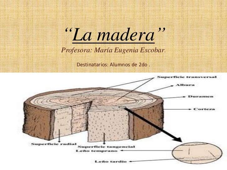 """La madera""<br />Profesora: María Eugenia Escobar.<br />Destinatarios: Alumnos de 2do .<br />"