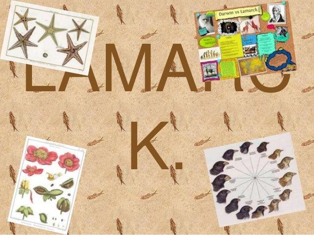 LAMARC K.