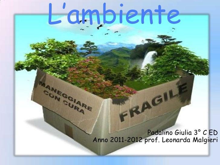L ambiente (2)