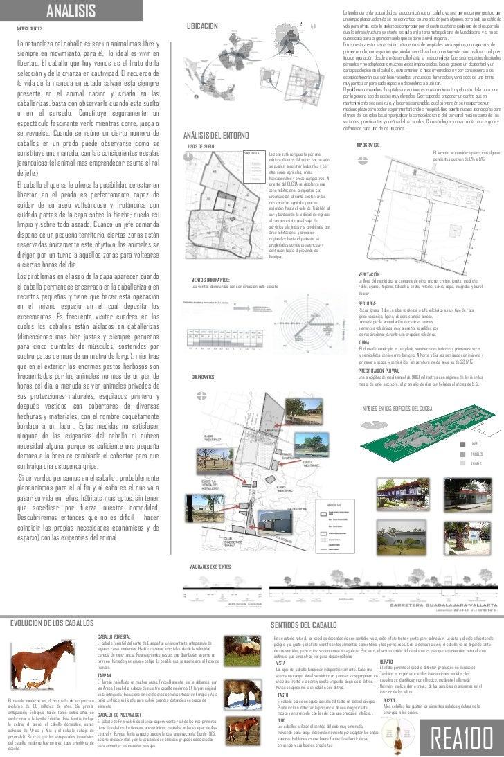 Lamina analisis y concepto for Conceptualizacion de la arquitectura