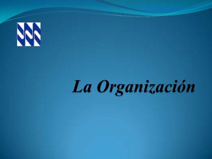 Laminas power point   la organización