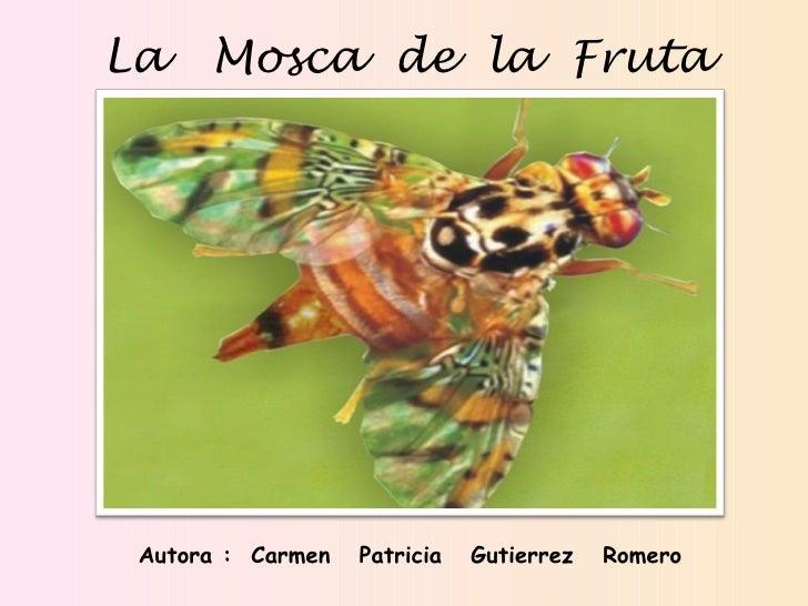 <ul><li>La  Mosca  de  la  Fruta </li></ul>Autora :  Carmen  Patricia  Gutierrez  Romero