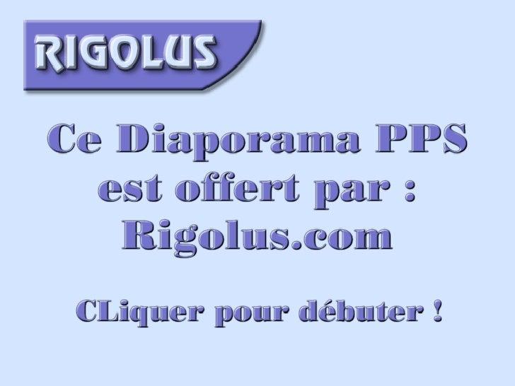 Lamour Dun PèRe
