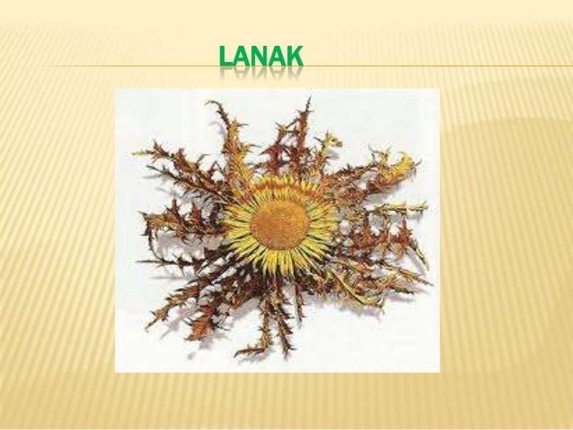 LANAK