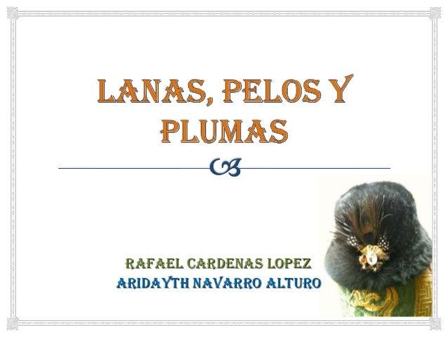 RAFAEL CARDENAS LOPEZ ARIDAYTH NAVARRO ALTURO