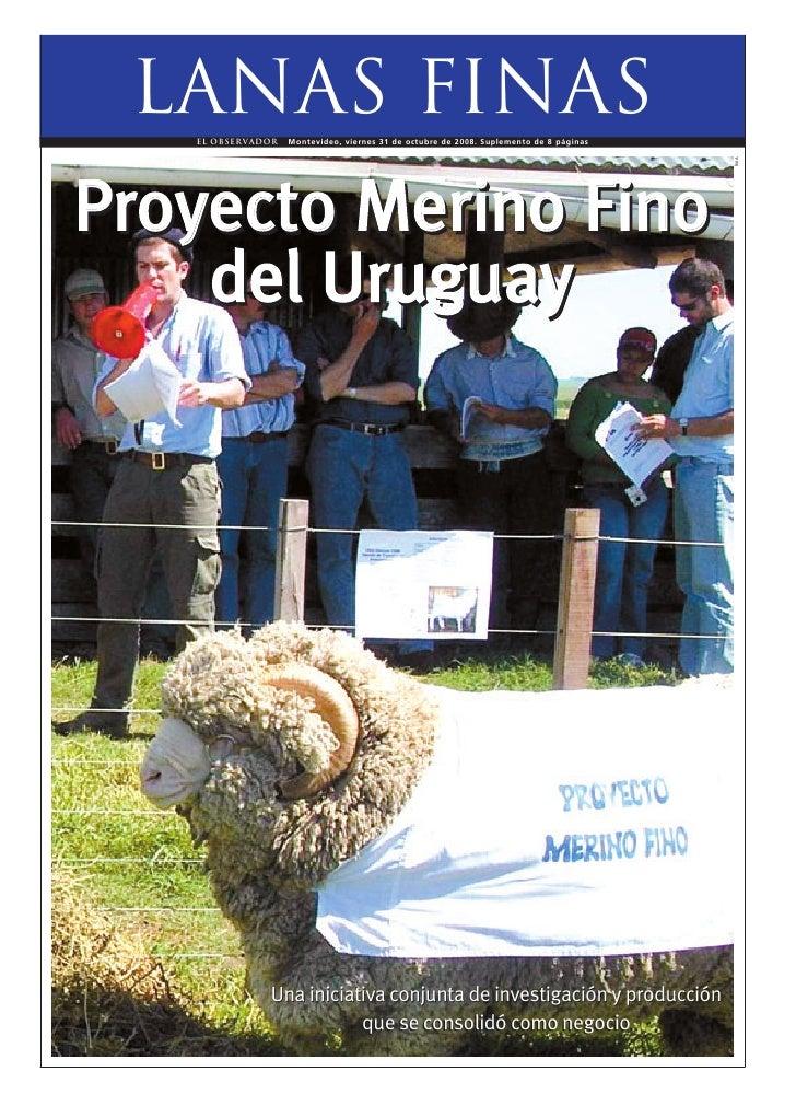 Lanas finas    EL OBSERVADOR   Montevideo, viernes 31 de octubre de 2008. Suplemento de 8 páginas                         ...