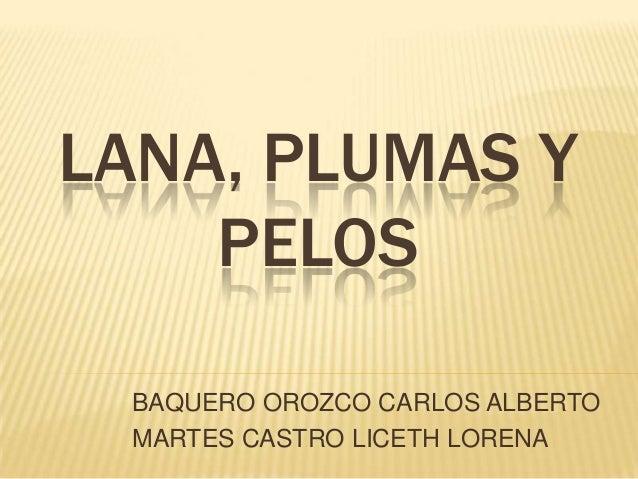 LANA, PLUMAS Y PELOS BAQUERO OROZCO CARLOS ALBERTO MARTES CASTRO LICETH LORENA