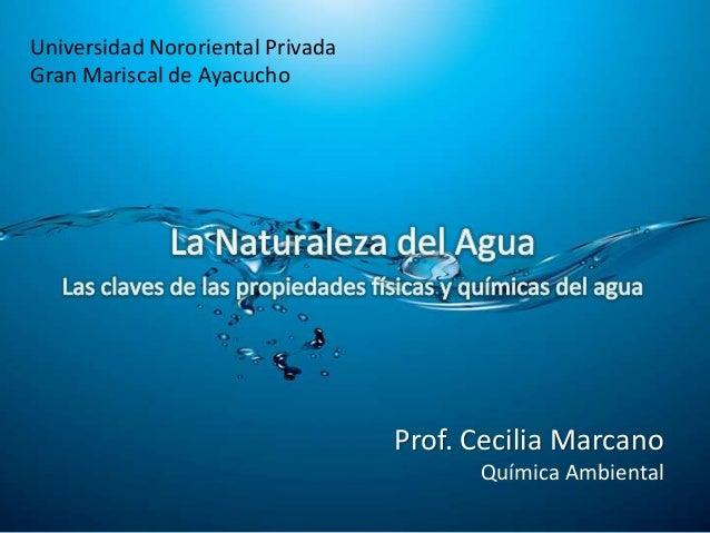Universidad Nororiental PrivadaGran Mariscal de Ayacucho                                  Prof. Cecilia Marcano           ...