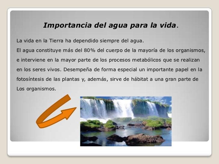 Importancia Del Agua en la Naturaleza Importancia Del Agua Para la