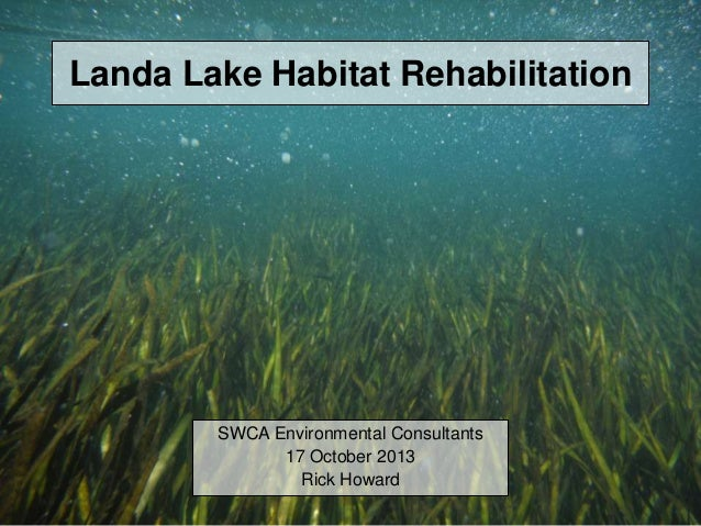 Landa Lake Habitat Rehabilitation SWCA Environmental Consultants 17 October 2013 Rick Howard